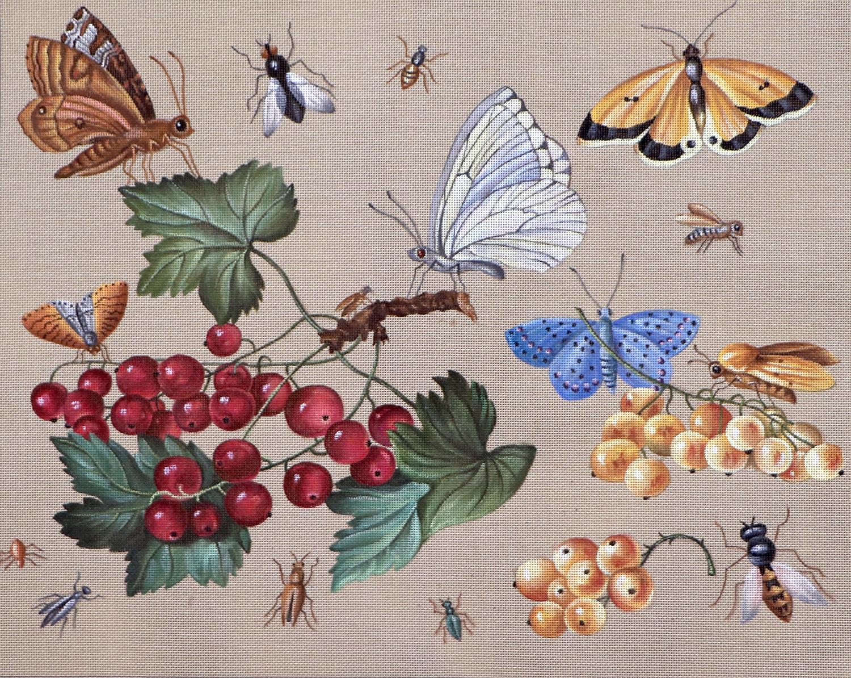 Myrtilles et Papillions