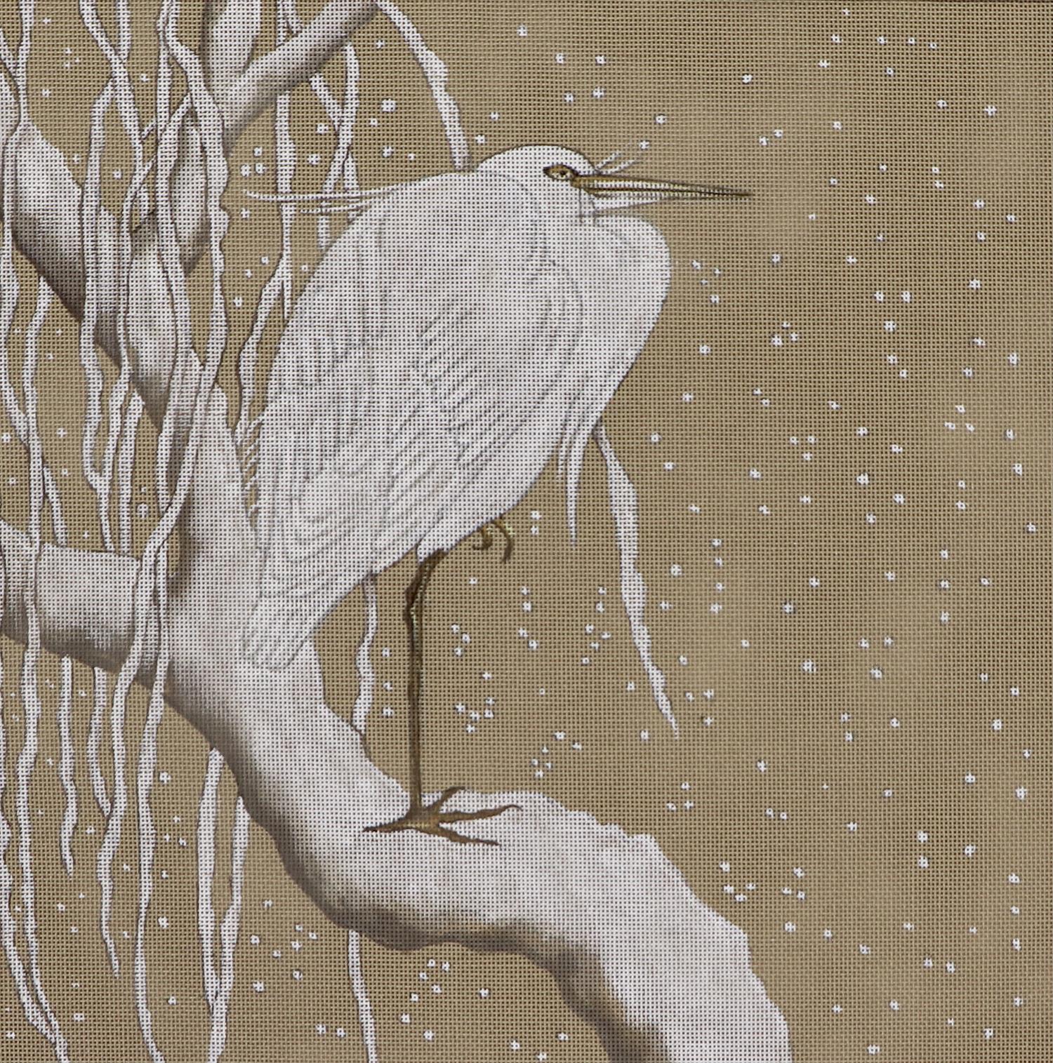 Snow Heron